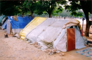 Picture of Huts that these poor people live
